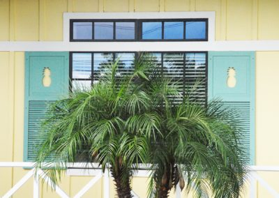 1920-Shutters 13, Pineapple Cove Acdmy